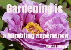 GARDENING IS... - Garden Pics and Tips
