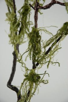 Make these with branches and moss