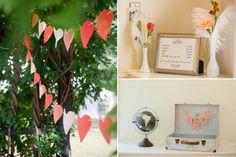 coral bunting feathers