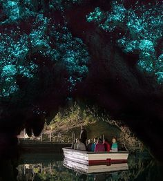 New Zealand's world-famous Glowworms tourist attraction at Waitomo Caves. A spell binding sight Waitomo Glow worm caves are truly a unique experience. Book now. New Zealand Attractions, New Zealand Tours, New Zealand Travel, Glowworm Caves New Zealand, Beautiful Places To Visit, Places To See, Glow Worm Cave, Vacation Places, Vacation Destinations