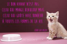 Citation sur la vie de Jean Gastaldi - Photo 7 : Album photo - aufeminin