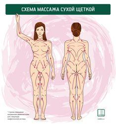 Partner Massage, Massage Tips, Massage Techniques, Massage Therapy, Massage Logo, How To Massage Yourself, Lymphatic Drainage Massage, Reflexology Massage, Muscle Anatomy