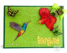 A5 Tent fold card Spectrum Noir Illustrator pens: AB3 TB4 CT3 LV3 AG3 BG6 AP3 OR3 LV1 LG4 YG1 YG3 CT1 CT2 GY1 AP3 CR11 Sheena's 'Tropical Nectar' stamps Designed by Kim Wilkin #crafterscompanion #spectrumnoir #illustrator