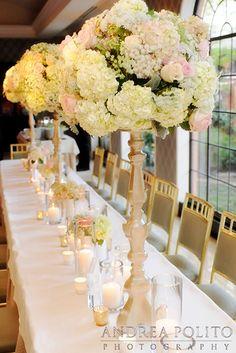D Weddings | Natalie Blankenship & Ryan Wolfe