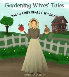 Gardening Wives' Tales: Which Ones Really Work? Epsom salts? Sugar? Baking soda? Egg shells? Copper pennies? Beer? Coffee grounds? Herb Garden, Vegetable Garden, Garden Plants, Organic Gardening, Gardening Tips, Wives Tales, Edible Garden, Garden Projects, Garden Ideas