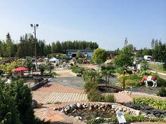 Kuva: Kivapiha Dolores Park, Travel, Viajes, Trips, Traveling, Tourism, Vacations