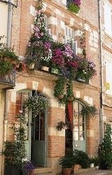LOVE THESE WINDOW BOXES!