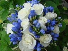 Rose and Gentiana Bridal Bouquet by @Gardenias Floral #weddings #flowers #pinparty
