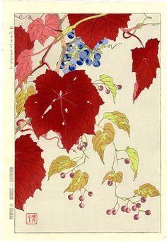 Kawarazaki Shodo Japanese Woodblock Print Wild Grapes 1954 | eBay