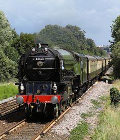 Gallery - The Steam Locomotive Trust Flying Scotsman, Steam Railway, Train Art, British Rail, Spartan Race, Vintage Dog, Steam Engine, Steam Locomotive, Train Tracks