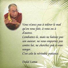 Dalaï Lama - 52 Citations - La vache rose Dalai Lama, Positive Attitude, Attitude Quotes, Positive Thoughts, Strong Words, Strong Quotes, Mahatma Gandhi, William Shakespeare, Yoga Quotes