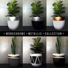 | NEW RELEASES • MONOCHROME METALLICS | Our most popular designs in new metallics, available at www.designtwins.com
