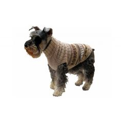 Are turtlenecks IN or OUT in canine fashion? Need to ask @IkeTheTerrier.