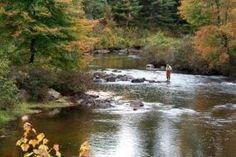 World Resources Institute (WRI) is running Pilot Projects For Watershed Protection - Through a PWS program, landowners receive financial incentives to conserve, sustainably manage, and/or restore watersheds.