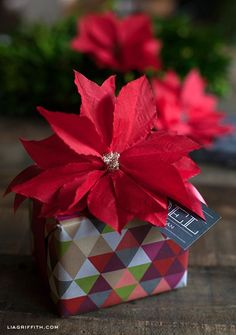 Make this easy gift topper or Christmas decoration from a simple paper cocktail napkin poinsetta. These are perfect for easy holiday decorations.