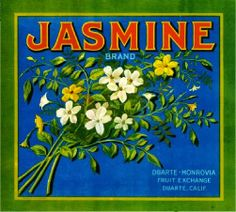Vintage Crate Labels - Jasmine Brand Fruit