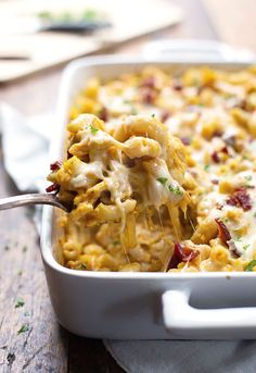 Chicken Bacon Pumpkin Pasta Bake - simple comfort food for fall! 370 calories. | pinchofyum.com