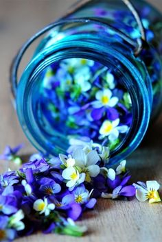 Blue jar of white and purple flowers Purple Flowers, Beautiful Flowers, Tiny Flowers, Edible Flowers, Spring Flowers, White Flowers, Romantic Flowers, Glass Flowers, Colorful Flowers
