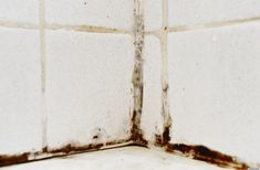 How to Remove Mold from your Bathtub