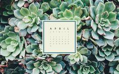 April7.jpg
