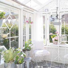 Ihana kun kaikki on alkanut kasvamaan nopeasti kun lämpö saapui♥♥ #kesä#kesähuone #kasvihuone #vanhatikkunat #valkoinen #vaaleakoti #puutarha #omakotionnenpesä #gardenlove #garden#greenhouse #oldwindows #växthus