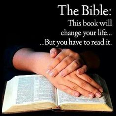 The Holy Bible is the most widely read book in the world, and is certainly my favorite!