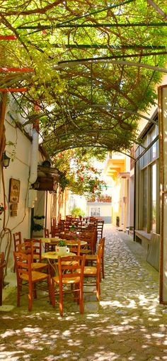An shady outdoor cafe in gorgeous Agiassos village on Lesbos island, Greece.