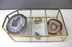 Glass and Brass Vintage Display Box Jewelry Air Plant Terrarium by Kollektive on Etsy https://www.etsy.com/listing/262037242/glass-and-brass-vintage-display-box