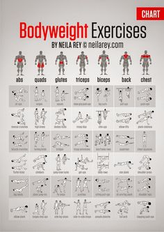 Abs, Glutes, Quads,Triceps, biceps, Back, Chest