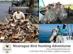 3 DAYS DUCK & DOVE HUNTING AND FISHING AT NICARAGUA. For luxury Dove and Duck Hunting Trips for Corporate Companies and Individuals or Groups who want a Exotic, no hassle, no extra charge hunt.  For information contact: www.nicaraguahuntingadventures.com / nbhasales@gmail.com / 1-832-548-4913