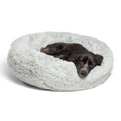 dog bed and blanket - Best Friends by Sheri Luxury Shag Fuax Fur Donut Cuddler (Multiple Sizes) – Donut Cat and Dog Bed. Dog Beds and Houses Border Collie, Le Dodo, Donut Cat, Cocker, Carlin, Dog Weight, Cat Dog, Dog Lab, Golden Retriever