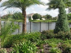 Decorative aluminum fence design by Mossy Oak Fence in Orlando & Melbourne, FL Types Of Fences, Black Fence, Wrought Iron Fences, Aluminum Fence, Stair Steps, Mossy Oak, Fence Design, Swimming Pools, Old Things