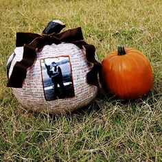 The Picture Perfect Pumpkin By Vanessa Coppola I have nothing against carving a few triangles into a pumpkin but who said that's a Halloween requirement? G