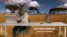 Click Frenzy To Go Wild In 2014 Kangaroo, Body Art, Statue, Animals, Body Painting, Baby Bjorn, Animales, Animaux, Animal