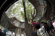 ring around tree tokyo - Ecosia