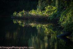 Outcrop on the Taunton River at dawn.
