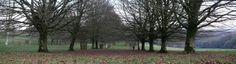 Lanhydrock Park Cornwall