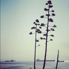 """@darkomajic's photo: """"#split #croatia #dalmatia #adriaticsea #crostagram"""""""