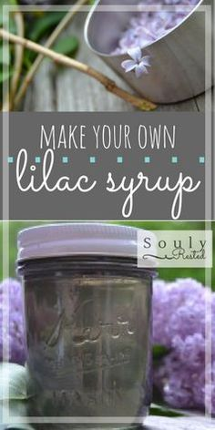 making syrup with lilacs | lilac syrup | backyard syrup making | DIY syrup | lilacs | why to plant lilacs | why I love lilacs