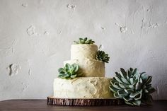 Wedding friends Just Hitched Love of Light Photography by Carien & Lizé Farm Wedding, Rustic Wedding, Wedding Ideas, Celebration Love, Country Chic, Light Photography, True Love, Wedding Cakes, Succulents