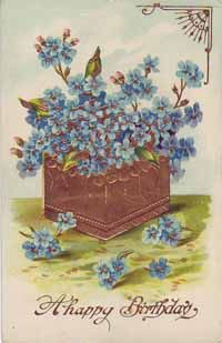 forget-me-nots a favorite flower of the Victorian period