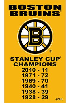 boston bruins champ banner