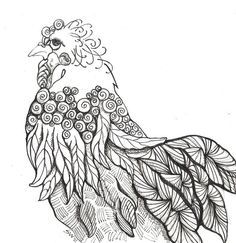 IF-Illustration Friday Curly Chicken by susanwalkerart, via Flickr