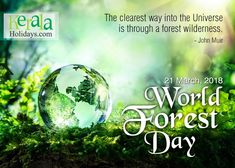Every tree is a life in itself, A life of richness and future, Plant trees for a better tomorrow, The earth is for us to nurture. #HappyForestDay!!  #dayofforests #forests #trees #ForestDay #naturelovers #nature #internationaldayofforests  #WorldForestDay #forestday