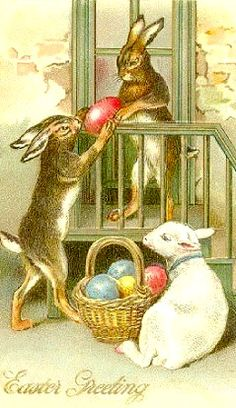.I loved this book as a kid. The story of a mama easter bunny