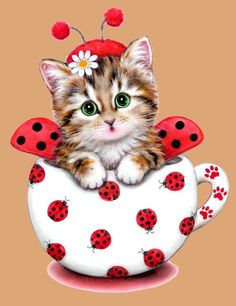 Cheap painting cross stitch, Buy Quality diamond painting cross stitch directly from China diamond painting Suppliers: Diamond Embroidery Decor Animal Red Cat Full area Resin Tool Diamond Painting Cross Stitch Round Drill needlework Animals And Pets, Baby Animals, Cute Animals, I Love Cats, Cute Cats, Image Chat, Red Cat, Cross Paintings, Beautiful Cats