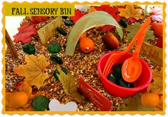 Sensory activities in the fall sensory bin To start off, let me tell you that it was my toddler who had the maximum fun time with this sensory-bin. She is at that time in her childhood, where getting Fall Preschool Activities, Preschool Projects, Sensory Activities, Toddler Activities, Teach Preschool, Preschool Classroom, Craft Projects, Fall Sensory Bin, Sensory Tubs
