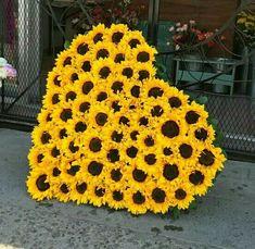 Pocket Full Of Sunshine, Summer Wallpaper, Pretty Pictures, Pretty Pics, Mellow Yellow, Crochet Earrings, Bloom, Sunflowers, Artwork