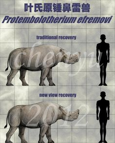 Protembolotherium efremovi by sinammonite on DeviantArt