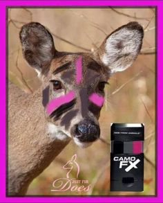 Even the deer want to use JFD Pink Camo face paint!
